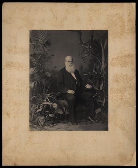 Joaquim Insley Pacheco. Pedro II, Imperador do Brasil : retrato, 1883. Rio de Janeiro, RJ / Acervo FBN